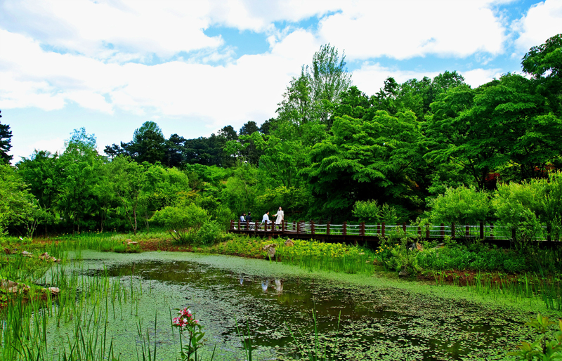 Come to Gyeonggi Province for summer vacation이미지